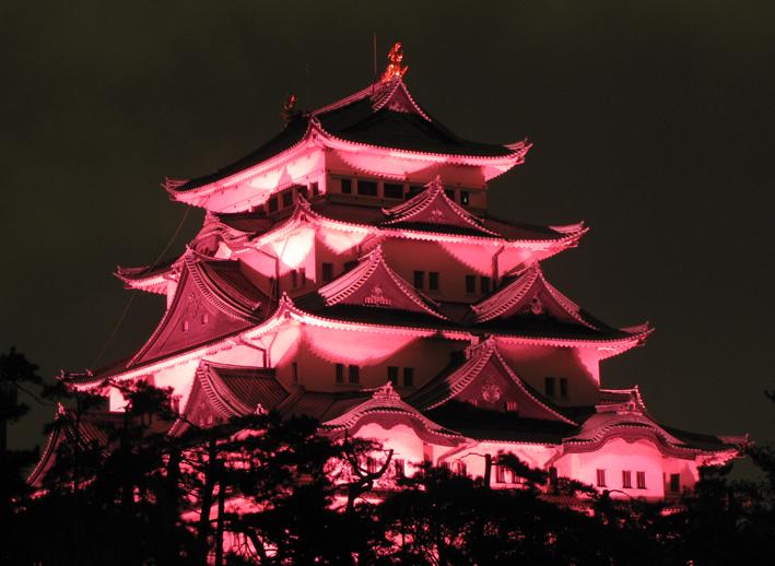 http://nekopura.blog.so-net.ne.jp/_images/blog/_1d6/nekopura/pinkn2-bf62d.jpg